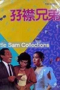 孖襟兄弟(1984)