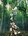 飞侠小白龙(2004)