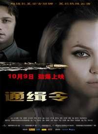 通缉令(2008)